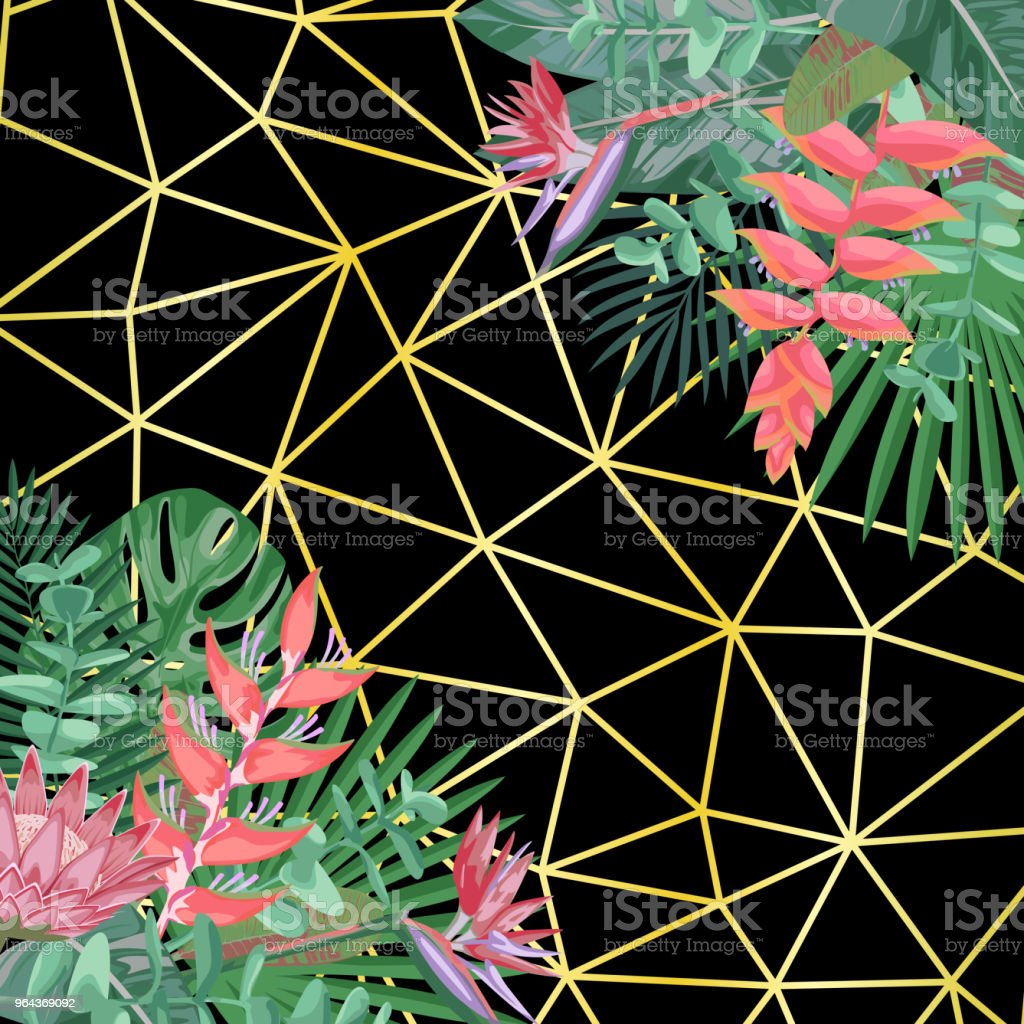 Tropische bloemen- en geometrische achtergrond - Royalty-free Abstract vectorkunst