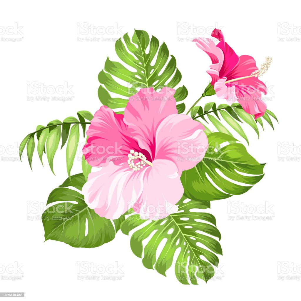 Tropical Flower Garland Stock Vector Art More Images Of 2015