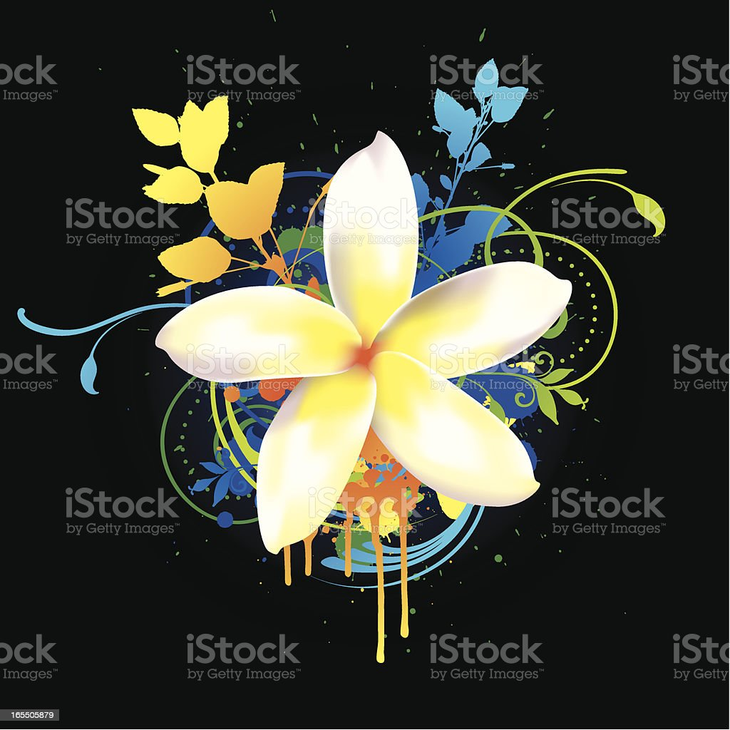 Tropical flower royalty-free tropical flower stock vector art & more images of blue