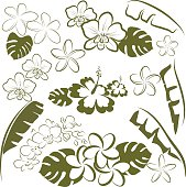 Tropical flowers and leaves vector art in green and white