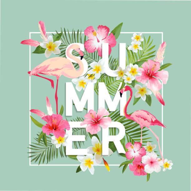 Tropische Blumen Hintergrund. Sommer-Design. Vektor. Flamingo-Hintergrund – Vektorgrafik