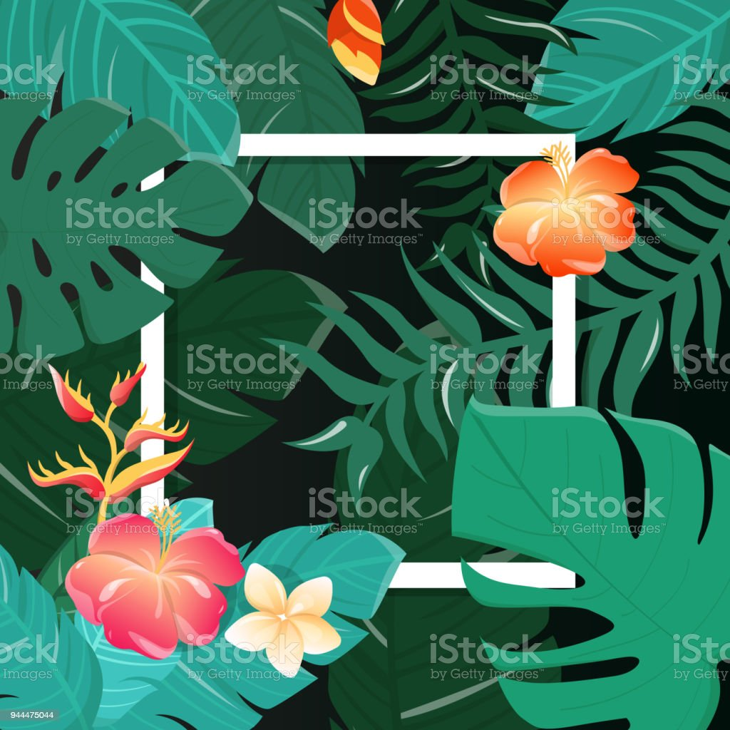 Tropical Flowers Background Summer Design Vector Stock