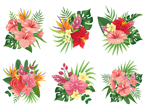 Tropical flowers bouquet. Exotic palm leaves, floral tropic bouquets and tropicals wedding invitation vector illustration set