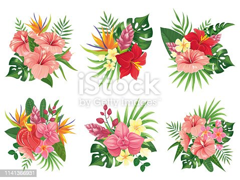 Tropical flowers bouquet. Exotic palm leaves, floral tropic bouquets and tropicals wedding invitation. Hibiscus flower and monstera hawaiian flora green. Vector illustration isolated icons set
