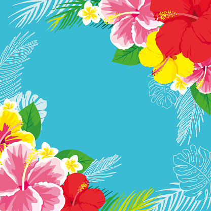 Tropical flowers hibiscus background