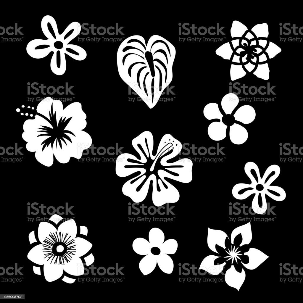 Tropical Flowers Silhouette Elements Set Isolated On Black