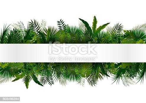 vector illustration of Tropical foliage. Floral design background