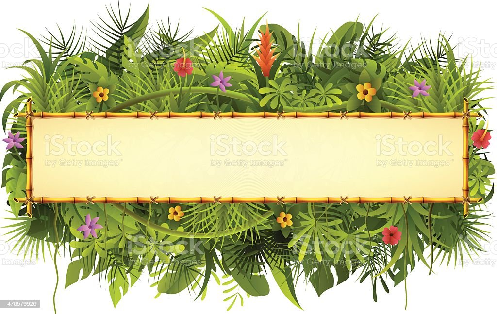 Tropical Forest and Bamboo Sign vector art illustration