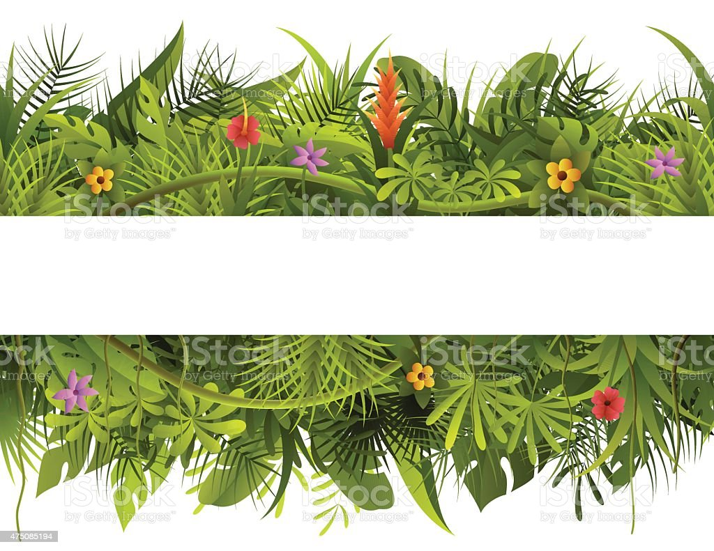 Tropical Forest Banner vector art illustration