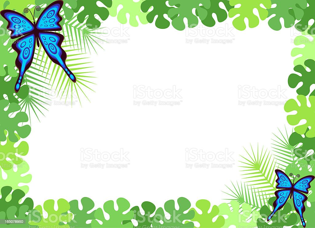 Tropical Forest Butterfly Frame Stock Vector Art & More Images of ...