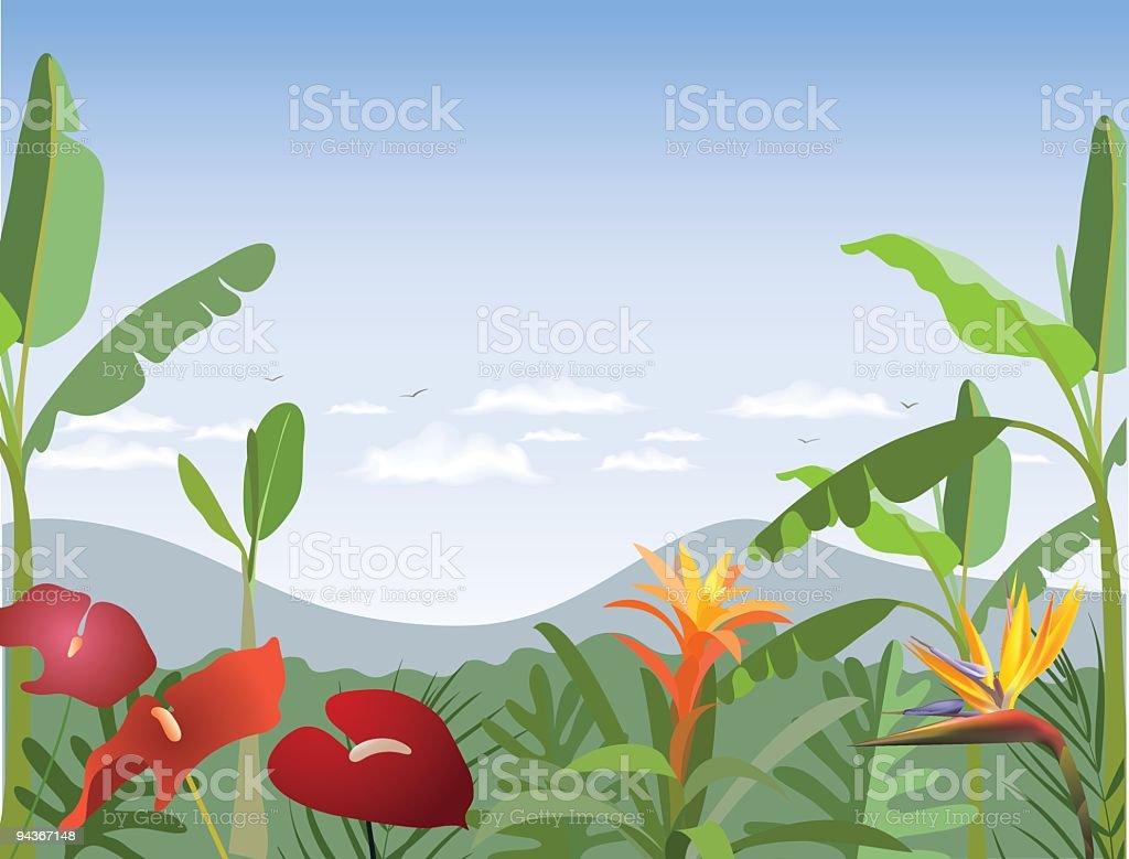 Tropischen Wald – Vektorgrafik