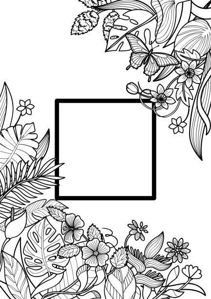 illustrazioni stock, clip art, cartoni animati e icone di tendenza di tropical frame mock up - farfalla ramo