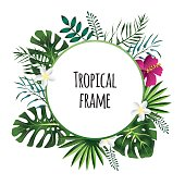Tropical frame, template with place for text. Vector illustration, isolated on white.