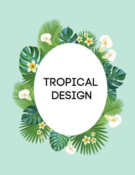 Cadre tropical. Carte postale de vecteur. - Illustration vectorielle