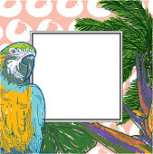 Tropical frame template with blank space for your copy! Great for promotions, email blasts, signage, whatever!