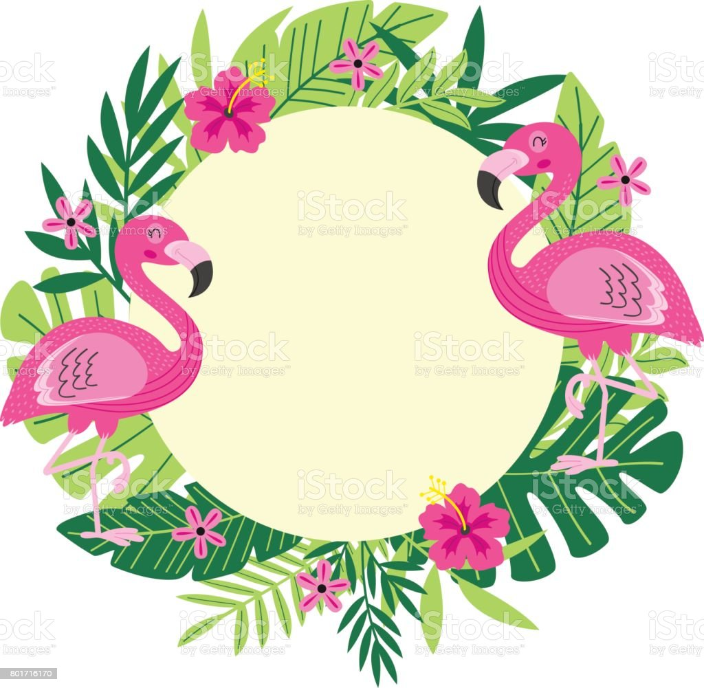 Tropical Frame With Flamingo Stock Vector Art Amp More