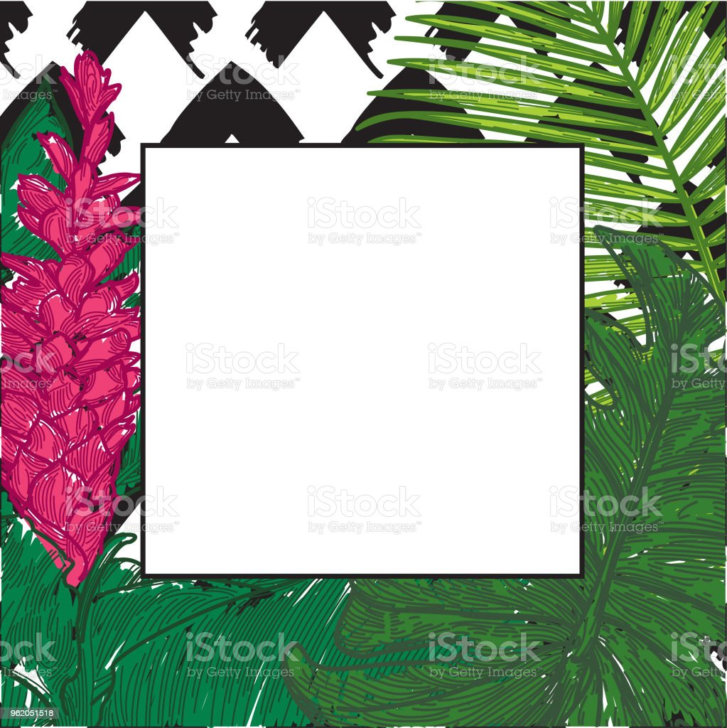 Vector hawaiian ginger clipart vector design tropical frame with hawaiian ginger palm and monstera stock vector rh istockphoto com hawaiian yellow ginger blossom hawaiian ginger flower watercolor izmirmasajfo