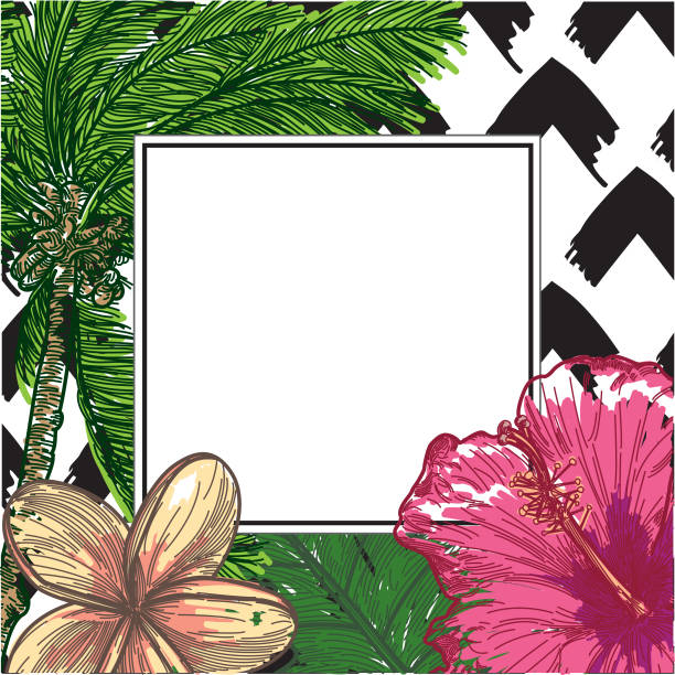 Tropical Frame with palm tree, hibiscus, and plumeria vector art illustration