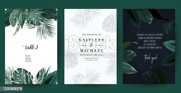 Tropical frames arranged from exotic emerald leaves. Design vector. Paradise plants, greenery and palm cards. Stylish fashion banners. Wedding templates. All leaves are not cut. Isolated and editable