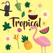 tropical fruit flower