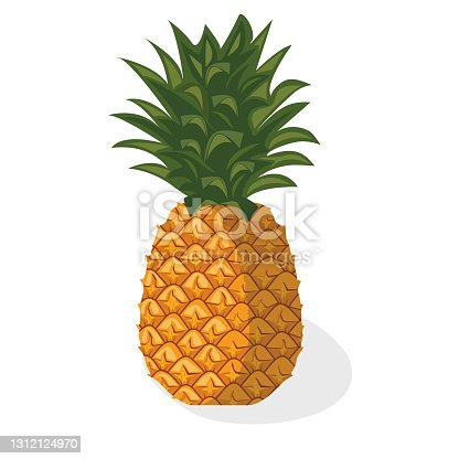 istock Tropical fruit pineapple. 1312124970
