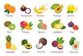 Tropical fruits set. Orange, Mangosteen, Banana, Papaya, Lemon, Kiwi, Mango, Guava, Jackfruit, Fig, Pineapple, Lucuma, Coconut, Passion fruit, Avocado isolated on white. Vector cartoon illustration.