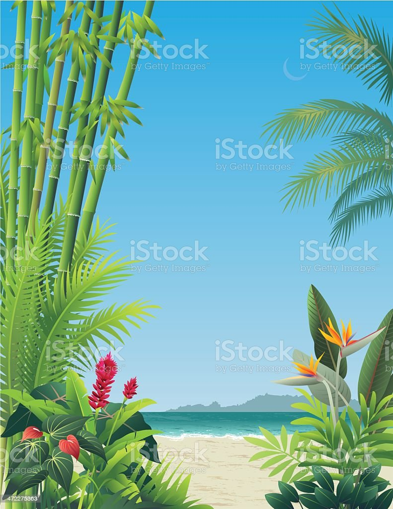 Tropical Garden View vector art illustration