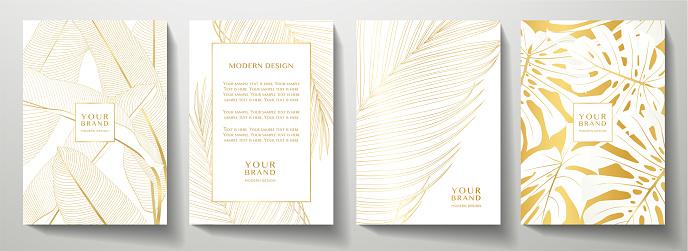 Elegant vector collection for wedding invite, brochure template, restaurant menu
