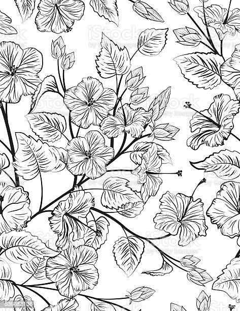 Tropical hibiscus seamless pattern background vector id536683136?b=1&k=6&m=536683136&s=612x612&h=gh7932a0canlz1ncbvxysvs0vbwt0qs3v hpaa87uju=