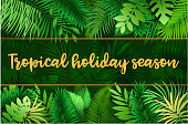 Drawn of vector blank tropical holiday banner. This file of transparent and created by illustrator CS6.