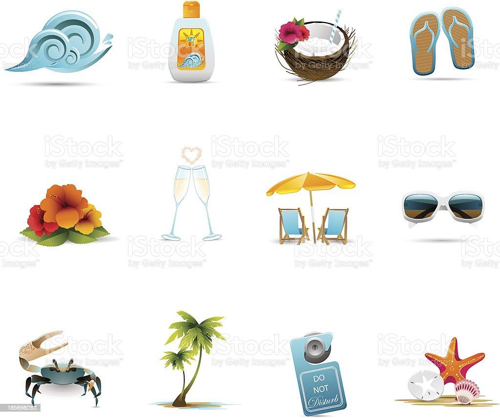 Tropical Honeymoon Icons vector art illustration