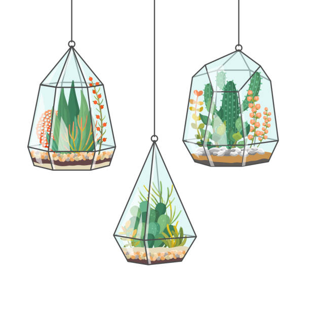 Hanging Pot Plant Illustrations, Royalty-Free Vector ...
