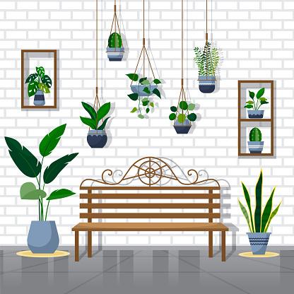 Tropical Houseplant Green Decorative Plant Interior House Illustration