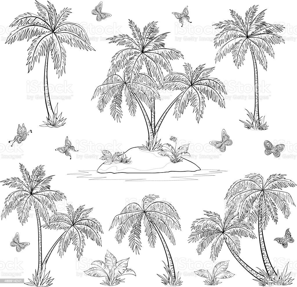 tropical island palms and butterflies outline stock vector art