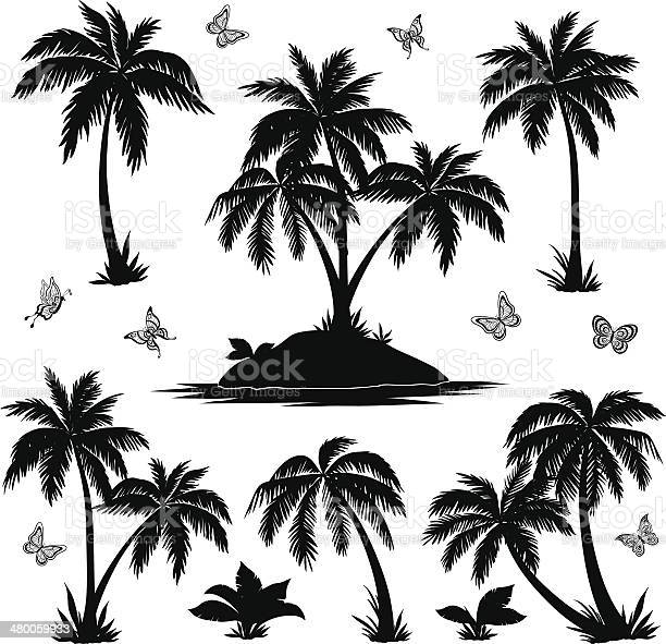Tropical island palms and butterflies silhouettes vector id480059933?b=1&k=6&m=480059933&s=612x612&h=swqbbswuoc3glhjp7xm2ysxzplx7mon 7aqx3cx  2y=