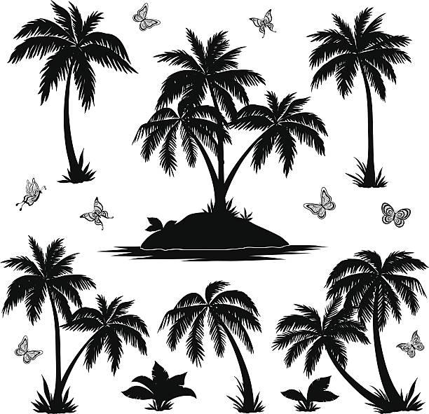 ilustrações, clipart, desenhos animados e ícones de ilha tropical, palmeiras e borboletas silhuetas - coqueiro