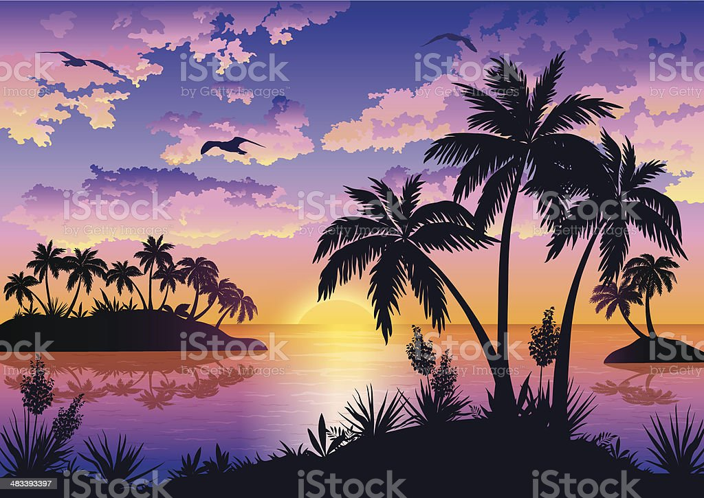 Tropical islands, palms, sky and birds vector art illustration