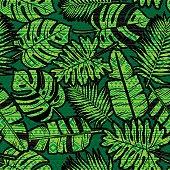Tropical jungle leaf pattern