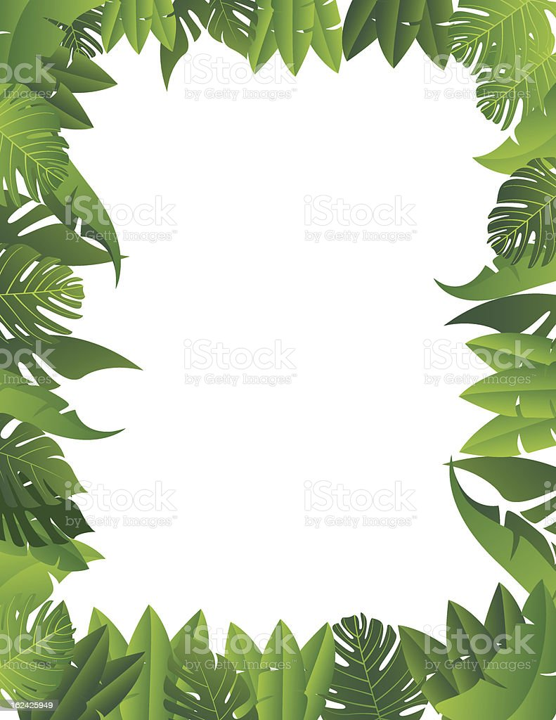 Fundo de folha tropical - ilustração de arte em vetor