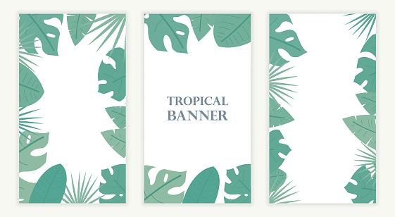 Tropical leaf banner. Exotic or jungle leaf.