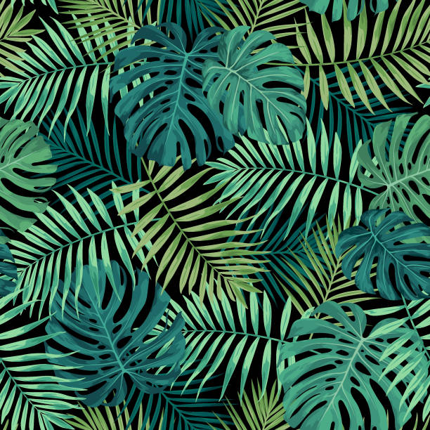 Tropical Leaf Pattern in Green Tropical leaf design featuring green palm and Monstera plant leaves on a black background. Seamless vector repeating pattern. hawaiian culture stock illustrations