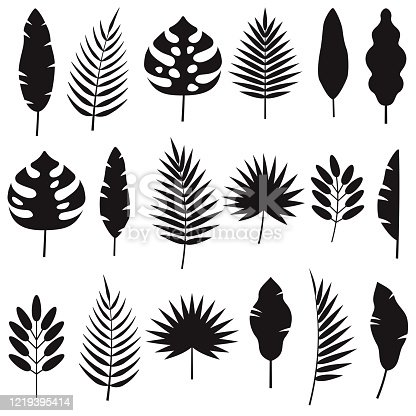 A set of tropical leaf silhouettes. File is built in CMYK for optimal printing. The background is transparent so these can be placed onto any color.