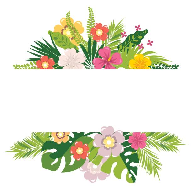 Tropical leaves and flowers Vector tropical leaves and flowers of exotic plants copy space banana borders stock illustrations