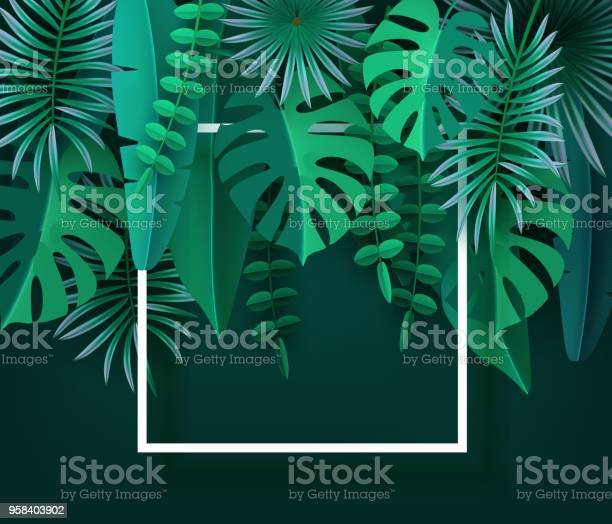 Tropical leaves and plants green abstract background with tropical vector id958403902?b=1&k=6&m=958403902&s=612x612&h=gfbcjtgefnsmnmuromkwuegkb1arncbbkfs3wcxjr10=
