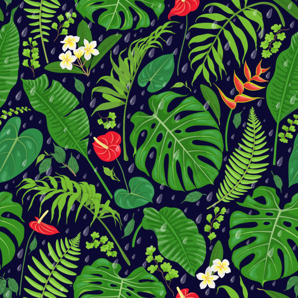 Tropical  Leaves and Rain Drops  Pattern Seamless pattern with tropical leaves, flowers  and falling rain drops on dark background. Tropic rainforest foliage texture. Vector flat illustration. amazon stock illustrations