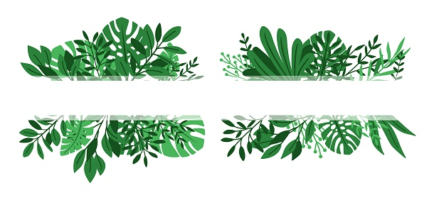 Tropical leaves banners