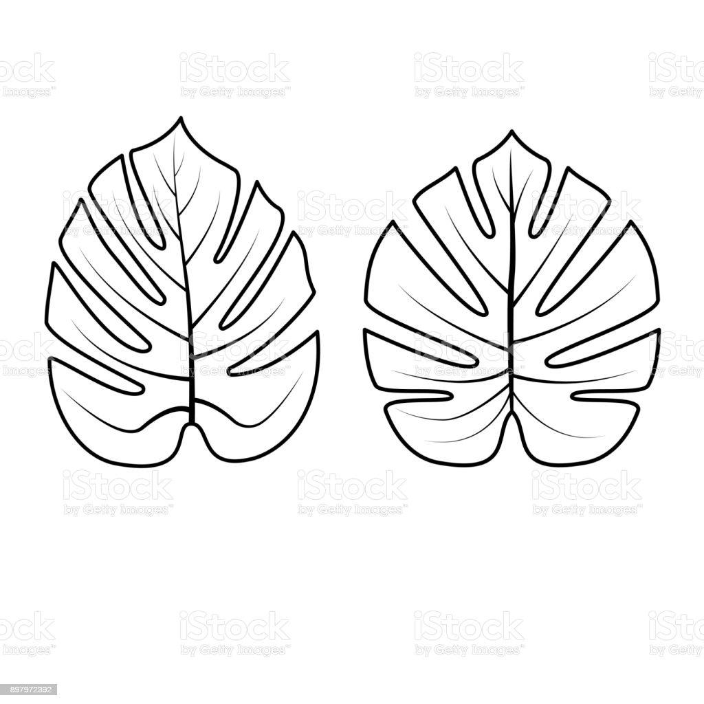 Tropische Blätter Sammlung Vektorillustration Stock Vektor Art Und