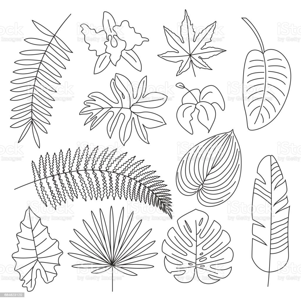 vectorsiconcom download vector icons tropical leaves on pastel