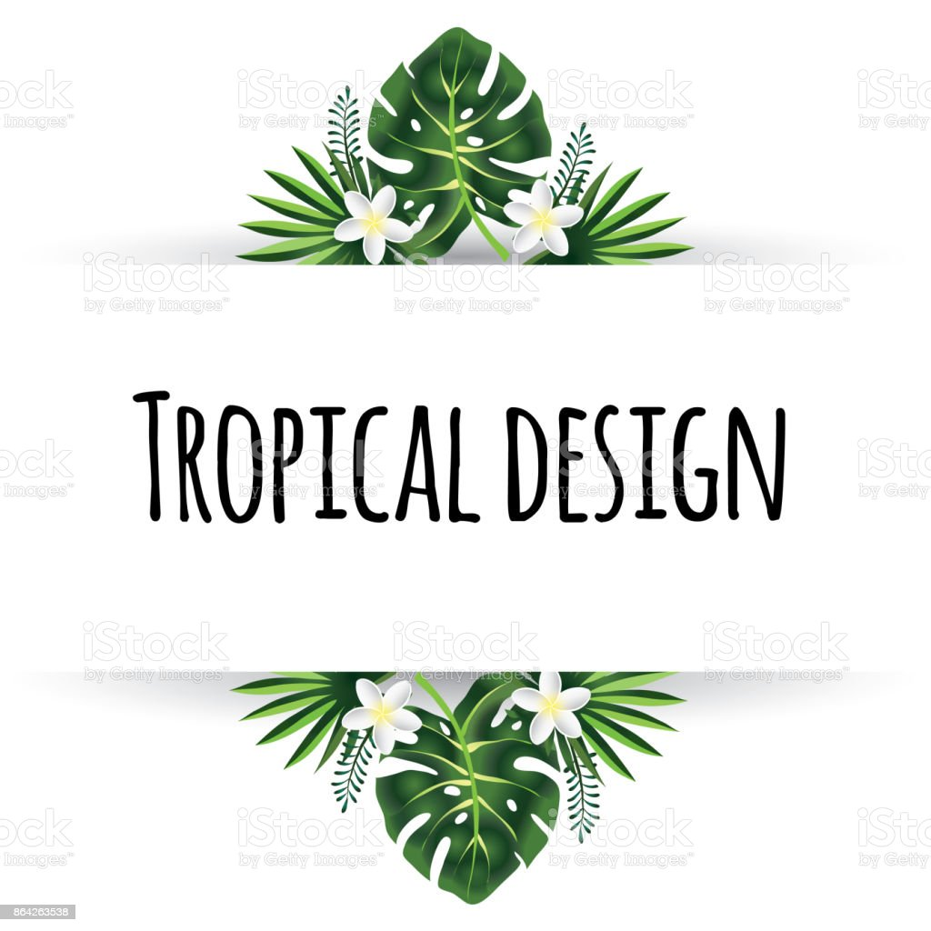 Tropical Leaves Illustration. Summer Vector Design Element. royalty-free tropical leaves illustration summer vector design element stock vector art & more images of art