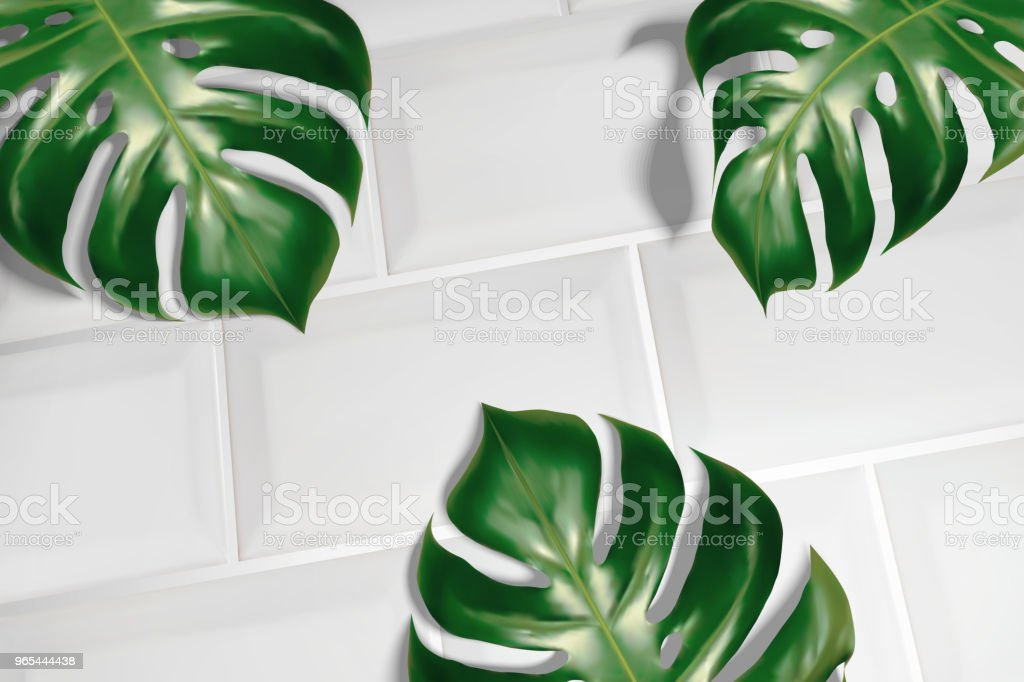 Tropical leaves on white tiles - Grafika wektorowa royalty-free (Bez ludzi)
